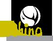 Rhino Construction